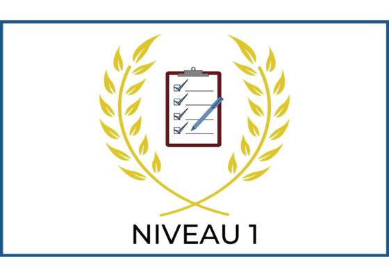 EXAMEN : NIVEAU 1