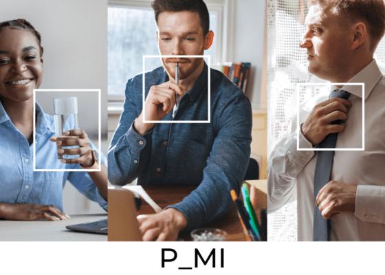 Les geste de préhension : P_MI